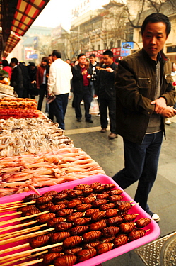 Open-air food market in central Beijing, China, with butterfly pupae on skewers in foreground.