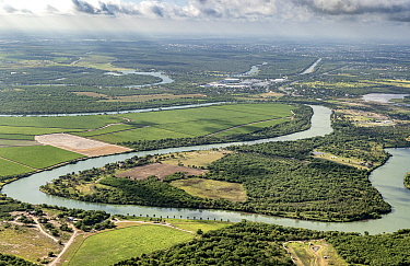 Meanders of the Rio Grande with view towards Tamaulipas, Mexico from Bensen-Rio Grande State Park, aerial view. Illustrates challenge of building a border wall alongside the river. Mission, Texas, USA...
