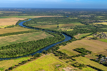 Lower Rio Grande Valley between Roma and Rio Grande City, Texas, USA. Aerial view from Tamaulipas, Mexico. July 2019.