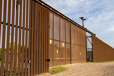 Gate along USA-Mexico border wall through Southmost Preserve. The border wall separates 85% of the reserve from the United State's side of the barrier. Nature Conservancy Reserve, Brownsville, Tex...