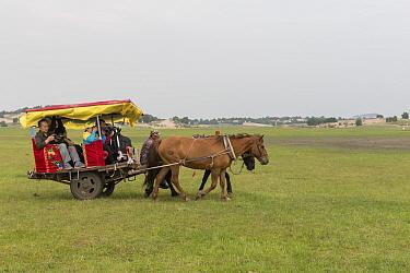 Group of tourists in horse drawn cart. Bashang Grassland, near Zhangjiakou, Hebei Province, Inner Mongolia, China. July 2018.