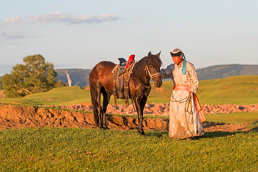 Mongol man in traditional dress standing with horse, hills in background, in evening light. Bashang Grassland, near Zhangjiakou, Hebei Province, Inner Mongolia, China. July 2018.