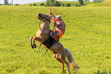 Mongol in traditional dress riding horse, demonstrating pitching. Bashang Grassland, near Zhangjiakou, Hebei Province, Inner Mongolia, China. 2018.