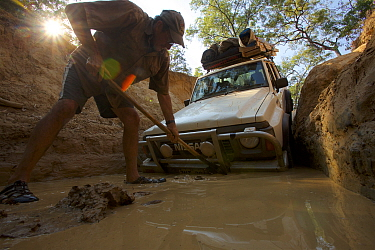 Man working to dig out the Nissan stuck at the bottom of the drop into Palm Creek on the OTL, Cape York Peninsula, Queensland, Australia.