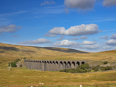 Ribblehead Viaduct, Batty Moss, Ribble Valley, Yorkshire Dales National Park, England, UK. September 2019.