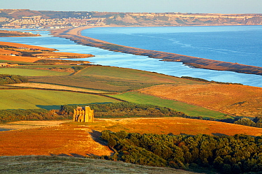 St. Catherine's Chapel with the Fleet and Chesil Beach, Dorset, England, UK. July.