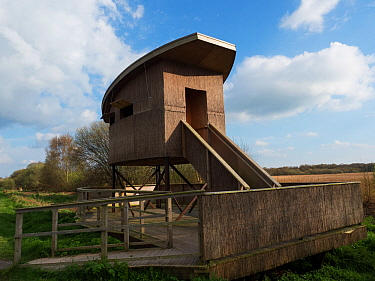Shapwick Heath Tower Hide, Shapwick Heath National Nature Reserve, part of the Avalon Marshes, Somerset Levels and Moors, England, UK, April 2019