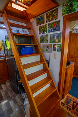 Inside Eight weeks and counting in total lockdown. Passing the time in Tui's garden and tiny house consisting of three 20ft shipping containers, Santa Cruz Island, Galapagos Islands April 2020