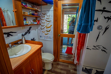 Fibreglass shower decorated with decals of photographer Tui De Roy's images. Taken during the Covid-19 lockdown, in Tui De Roy's tiny house consisting of three 20ft shipping containers. Santa...