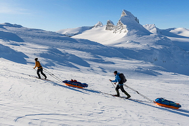 Orsolya Haarberg and Erlend Haarberg pulling sledges in the Jotunheimen mountains, with the Mt Store Smorstabbtinden in the background. Norway. April 2020.