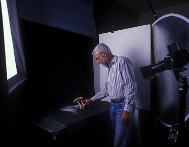 Yves Lanceau in his studio photographing spore dispersal pattern of False Death Cap fungus (Amanita citrina var. alba)