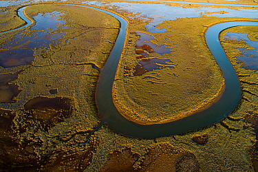 RioTinto tidal area and saltmarshes, with healthy vegetation and red silt containing pyrite (an iron mineral common in sediments). The silt is deposited by constant tidal flooding. This image was take...