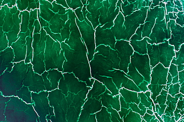 Crystallised patterns in an abandoned pond used for the disposal and stacking of phosphogypsum with shallow, but highly toxic radioactive green water in Huelva, Southern Spain. Phosphogypsum is a radi...