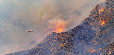 Lightning caused fire on Mount Lemmon, Forest Service Fire suppression Wildland Firefighters use helicopters to 'bomb' the hot spots to control the spread. Mount Lemmon's north palisades,...