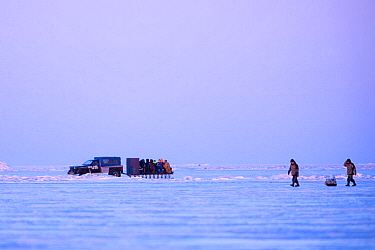 Fishermen travelling on back of sled, pulled by car after ice fishing. Lake Peipsi, Tartumaa County, Estonia. February.