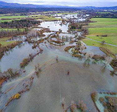 Flooded River Pivka , with water covering alpine pastures near Postojna, Slovenia, November 18 2019.
