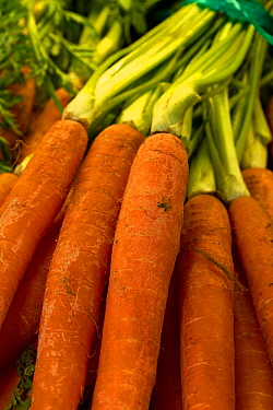 Carrots for sale in supermarket.