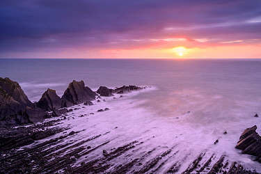 Hartland Quay at sunset, showing an eroded synclinal fold exposed Carboniferous age sandstones and shales. Hartland, Devon, UK. February.