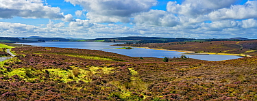 Llyn Brenig reservoir on Denbigh Moors used to manage flow in the River Dee in drought conditions to maintain water supply to North West England North Wales UK September 2019 222627
