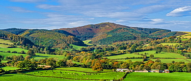 Moel Famau in the Clwydian Mountain Range viewed from Loggerheads Country Park in autumn near Mold, North Wales, UK, October.