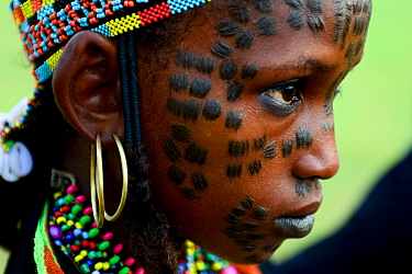 Girl from Wodaabe nomadic tribe with traditional scarifications / markings on face. Attending Gerewol festival, a gathering of different clans in which women choose a husband. Chad, Sahel, Africa. 201...