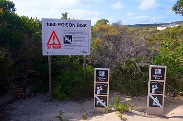 National Park information signs and sign informing visitors of the use of Sodium fluoroacetate or 1080 poison for control of pest foxes and feral cats. Poison used by Western Shield wildlife recovery...