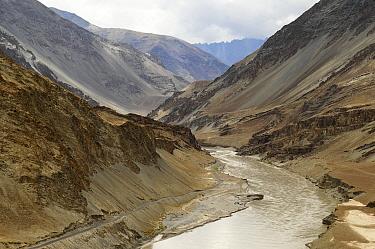 Valley of the Zanskar River, tributary of the Indus River. Ladakh, India. September 2011.