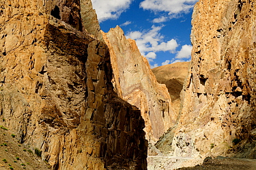 Rockfaces in Shila Gorge, track running through gorge. Zanskar, Ladakh, India. September 2011.