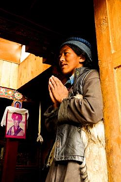 Buddhist woman praying in small monastery. Honupatta, Ladakh, India. 2011.