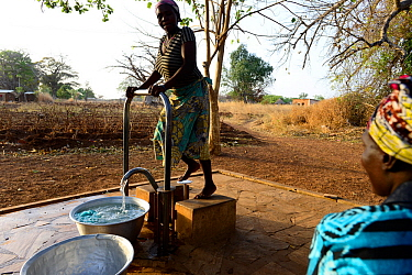 Somba women collecting water from artificial source, woman pumping water with foot. Land of the Batammariba, Benin, 2020.