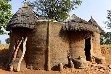 Traditional houses of the Somba ethnic group, like small single-family castles, built in clay. Land of the Batammariba, Benin, 2020.