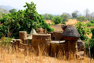 Takyenta mud tower house within Tammari village, made from mud, branches and straw. Koutammakou, the Land of the Batammariba, Togo, 2020.