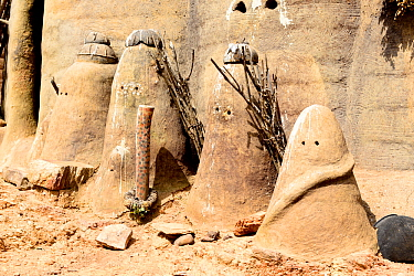 Protectors of evil spirits made from clay, holding sticks outside mud tower house in Tammari village. Koutammakou, the Land of the Batammariba, Togo, 2020.