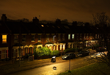 Fox (Vulpes vulpes) moving through its territory at night, North London, England, UK. December.