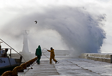 Storm sending spray over pier, Kalk Bay harbor, False Bay, Cape Town, South Africa.