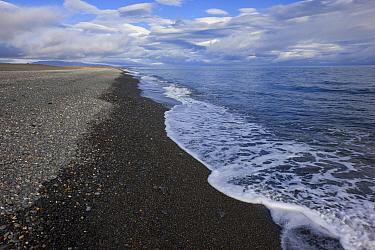 Gravel shoreline, Wrangel Island, Siberian Arctic, Chukchi Sea, Russia. August.