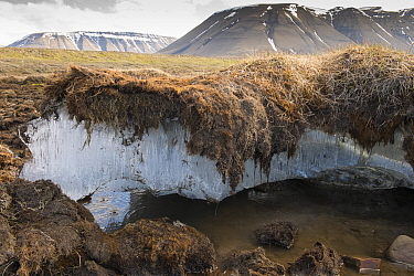 Exposed melting permafrost in the arctic archipelego of Svalbard, Norway. June 2016.