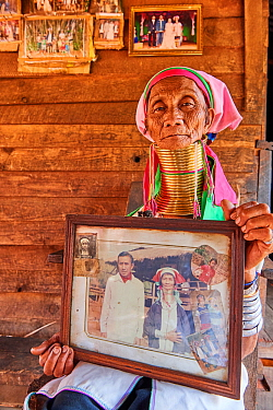 Elderly Kayan Lahwi woman (80 years old) with brass neck coils and traditional clothing sitting on her home deck and showing pictures of her when she was young. The black and white picture shows her a...