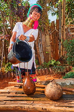 Kayan Lahwi woman with brass neck coils and traditional clothing filling a jar with water drawn from the well below. In the mountains of Pan Pet region, their sole clean water source comes from the ra...