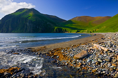 Peschanaya Bay, Medny Island, Commander Islands, Russia. Dramatic escarpments, glacial cirques, and beautiful small beaches are prominent features of Medny Island in Russia's Commander Islands (ak...