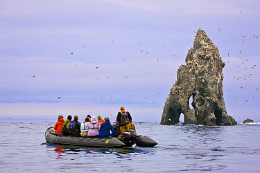 Ecotourists view a seabird colony on off-shore rocks in the Bering Sea near Verkhoturova Island, Russia. The nesting species include common and Brunnich's guillemots (Uria aalge and Uria lomvia ar...