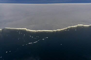 Aerial view of ice shelf in Franz Jozef Land, Arctic Russia. July 2019.