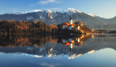Mountains, forests and Church of the Assumption reflected in Lake Bled. Bled, Upper Carniola, Slovenia. February 2020.