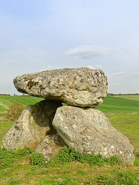 The Devil's Den, the remains of a neolithic burial chamber or dolmen at Fyfield Down National Nature Reserve, the Ridgeway, Marlborough Downs, Wiltshire, UK, April 2019.