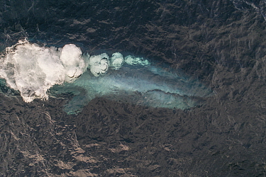 Blue whale (Balaenoptera musculus) blowing bubbles, aerial view. Baja California, Mexico. April.