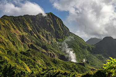 Steam rising from Boiling Lake, a sulphur lake surrounded by cloud forest on active volcano. Morne Trois Pitons National Park, Dominica, Lesser Antilles. 2020.