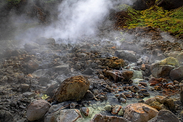 Rocky slope with hot stream and steaming sulphur fumes from active volcano. Valley of Desolation, Morne Trois Pitons National Park, Dominica, Lesser Antilles. 2020.