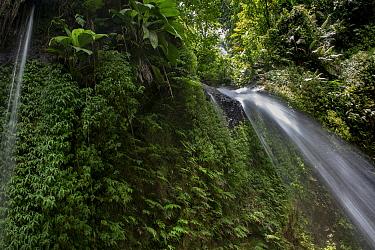 Salton Waterfalls in rainforest. Dominica, Lesser Antilles.