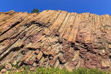Acidic polygonal volcanic rock columns, High Island, Hong Kong Global Geopark, China, November 2016.