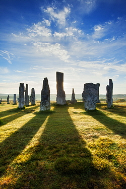 Callanish Stone Circle, standing stones casting long shadows in morning light. Isle of Lewis, Outer Hebrides, Scotland, UK. May 2010.